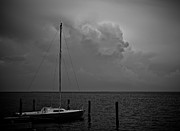 Lbi Posters - Head in the Clouds in black and white Poster by Mark Miller