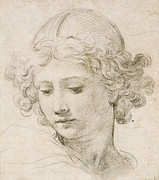 Young Woman Drawings Framed Prints - Head of an Angel Framed Print by Pietro da Cortona