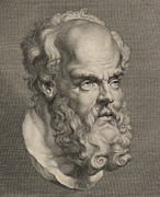 Human Head Drawings - Head of Socrates by Anonymous