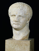 Marble Statue Sculpture Posters - Head of Titus Poster by Anonymous