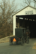 Horse And Buggy Originals - Heading Home by Doug Hoover
