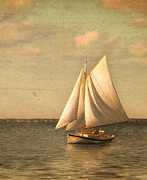 Vineyard Haven Prints - Heading In Print by Michael Petrizzo