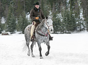 Gray Horses Photos - Heading Out by Sandra Bronstein