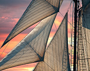 Sails Prints - Headsails Print by Fred LeBlanc