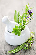 Ceramic Posters - Healing herbs in mortar and pestle Poster by Elena Elisseeva