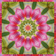 Spiritual. Geometric Prints - Healing Mandala 25 Print by Bell And Todd