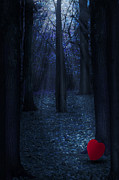 Ethiriel  Photography - Heart In The Forest