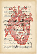 Cardiac Posters - Heart Music Poster by Nomad Art And  Design