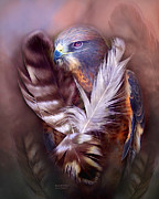 Spirit Hawk Art Framed Prints - Heart Of A Hawk Framed Print by Carol Cavalaris