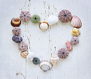 Wooden Prints - Heart of seashells and rocks Print by Elena Elisseeva