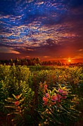 Phil Koch - Heaven on Earth