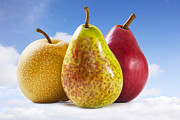 Pears Prints - Heavenly Pears Print by Colin and Linda McKie