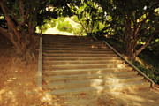 Dappled Light Photo Metal Prints - Heavenly Stairway Metal Print by Madeline Ellis