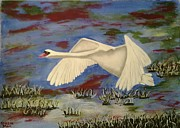 Susan McLean Gray - Heavenly Swan