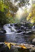 Creeks Photo Posters - Heavens Light Poster by Debra and Dave Vanderlaan