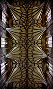 The Vault Prints - Heavenward -- Winchester Cathedral Ceiling Print by Stephen Stookey