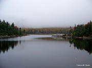 Foliage In White Mountains Posters - Heavy Blanket Over The Beaver Pond Poster by Eunice Miller