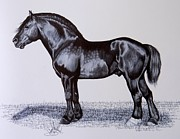 Horse Images Drawings Prints - Heavy Draft Horse Series Print by Cheryl Poland