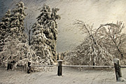 Winter Landscapes Digital Art Metal Prints - Heavy Laden Blizzard Metal Print by Lois Bryan