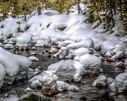 William Havle - Heavy Snow Pack Yuba