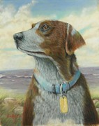 Hound Pastels Framed Prints - Heinz 57 Framed Print by Ace Robst Jr