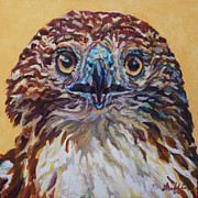 Bird Of Prey Art Paintings - Helen by Patricia A Griffin