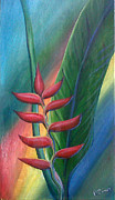 Ross Daniel Paintings - Heliconia by Ross Daniel
