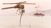 Installation Art Art - Helicopter Dragonfly by Rajiv Karanam