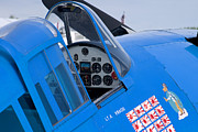 Blue Airplane Photos - Hellcat by Adam Romanowicz