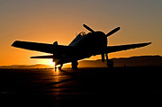 Hellcat Fighter Posters - Hellcat at Dawn Poster by Steve Rowland