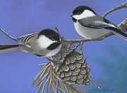 Chickadee Pastels Framed Prints - Hello Chickadees Framed Print by Tracy L Teeter