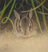Rabbit Pastels - Hello Pastel by Ben Kotyuk
