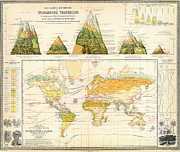 Vintage Map Paintings - Henfreys distribution of vegetation 1854 by MotionAge Art and Design - Ahmet Asar