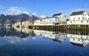 Port Town Framed Prints - Henningsvaer harbour Framed Print by Heiko Koehrer-Wagner