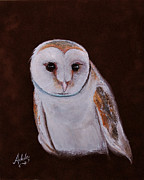 Barn Owls Prints - Henry the Owl Print by Adele Moscaritolo