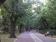 Andreea Alecu - Herastrau Park