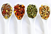 Wellbeing Photos - Herbal teas by Elena Elisseeva