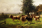 Grey Clouds Posters - Herd Of Cows Poster by Adolf bei Dachau