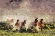 Wild Horse Mixed Media Prints - Herd of wild horses Print by Georgi Dimitrov