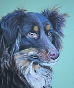 Scared Painting Metal Prints - Herding Dog Metal Print by Shirl Theis