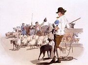 Herdsmen Of Sheep And Cattle, From The Print by William Henry Pyne