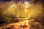 Barry Jones - Here Comes the Sun