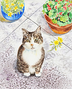 Geranium Paintings - Here Kitty Kitty Kitty by Irina Sztukowski