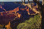 Lapin Prints - Hermit Rest Grand Canyon National Park Print by Nadine and Bob Johnston