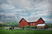 Farming Barns Digital Art Posters - Herndon Horse Farm Poster by Lori Deiter