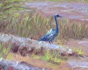 Jordan Painting Posters - Heron at Lake Jordan detail Poster by Pamela Poole