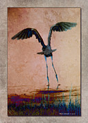 Wb Johnston Framed Prints - Heron Ballet Framed Print by WB Johnston