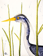 Santa Cruz Art Originals - Heron in the Reeds by Alexandra  Sanders