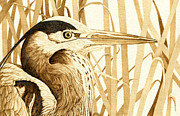 Heron Pyrography - Heron in the Reeds by Cate McCauley