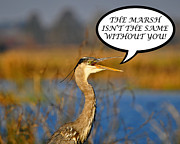 Great Heron Photos - Heron Without You Card by Al Powell Photography USA